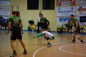 17-02-04 - NVL-Pesaro (15)